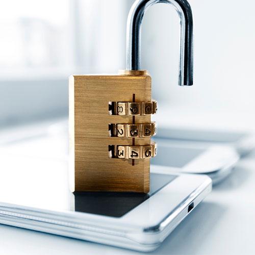 carrier unlocks for cell phones wireless palnet 310